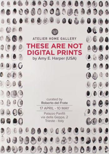 Catalogo-Amy-Harper